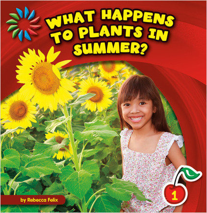Cover: What Happens to Plants in Summer?