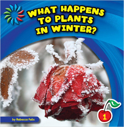 Cover: What Happens to Plants in Winter?