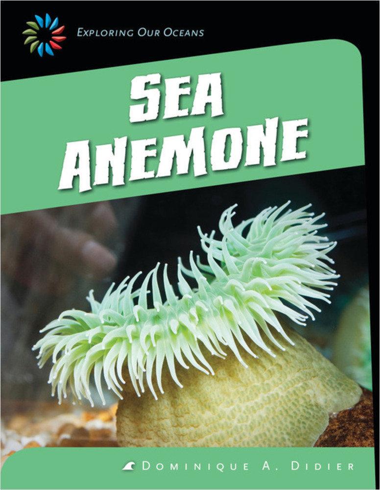 Cover: Sea Anemone