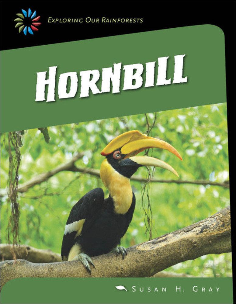 Cover: Hornbill