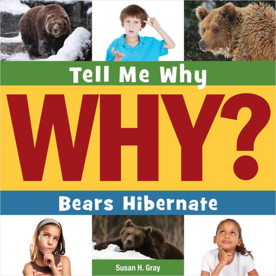 Cover: Bears Hibernate