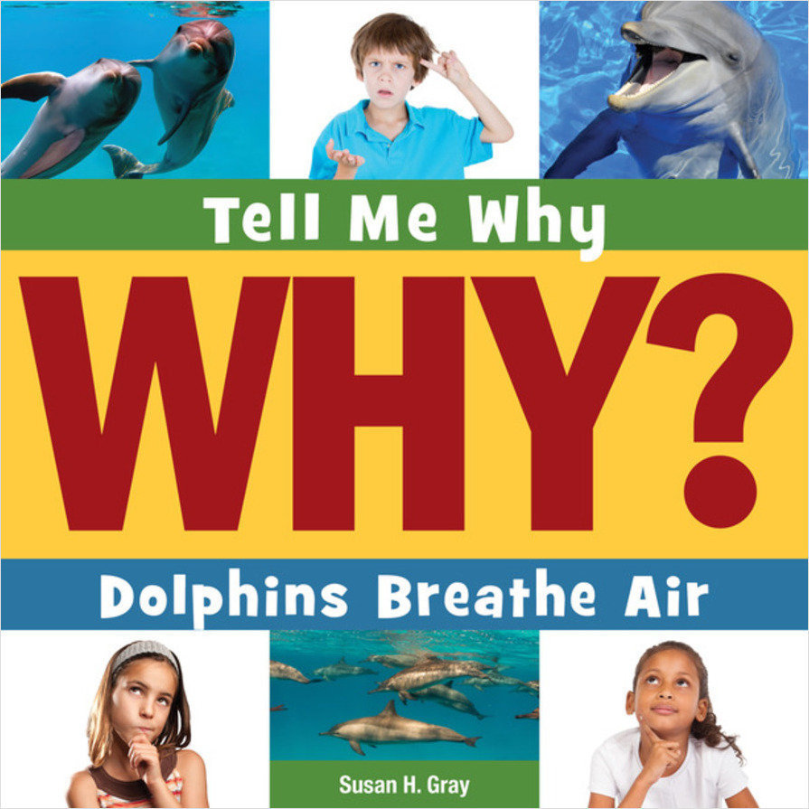 Cover: Dolphins Breathe Air