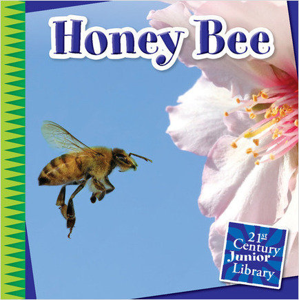Honey Bee - Cherry Lake Publishing Group
