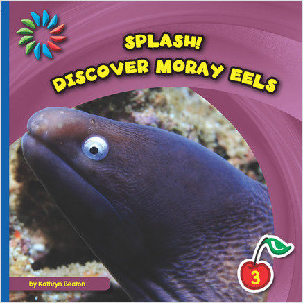 Cover: Discover Moray Eels