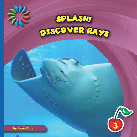 Cover: Discover Rays