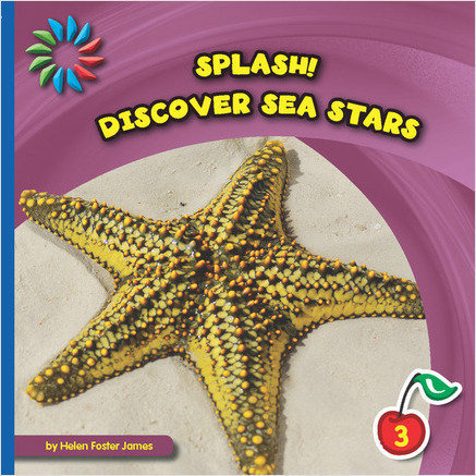 Cover: Discover Sea Stars
