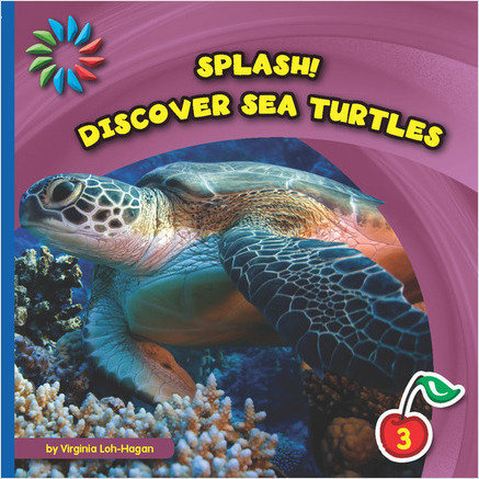 Cover: Discover Sea Turtles