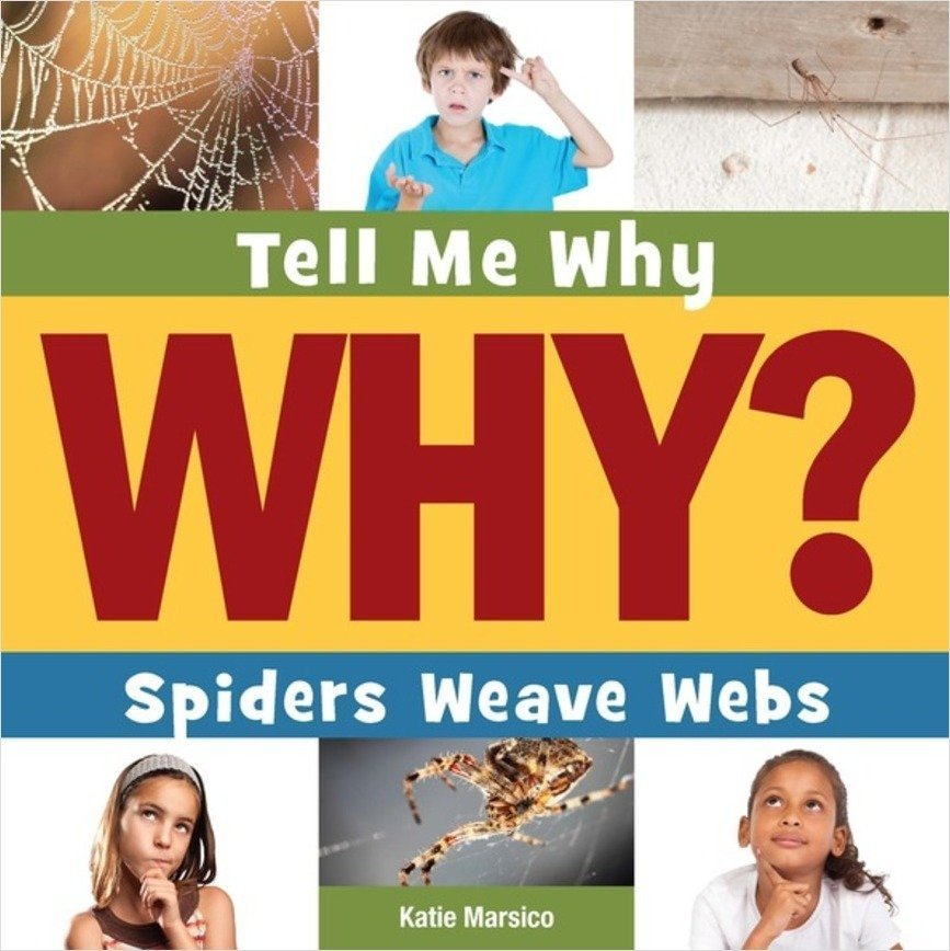 Cover: Spiders Weave Webs
