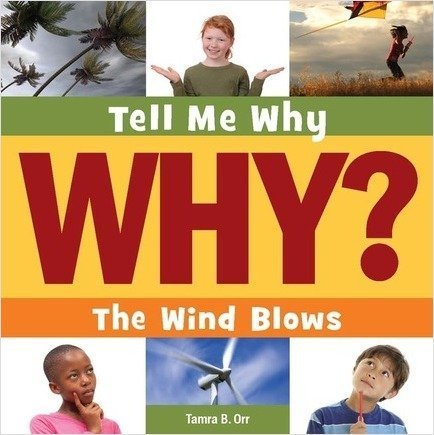 Cover: The Wind Blows
