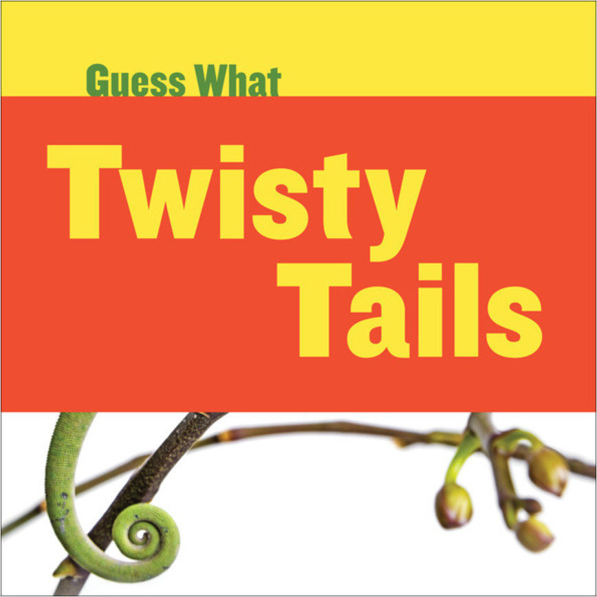 Cover: Twisty Tails