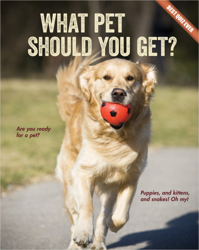 Cover: What Pet Should You Get?
