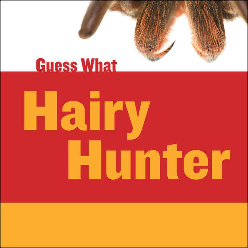Cover: Hairy Hunter: Tarantula