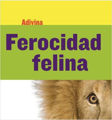 Cover: Ferocidad felina (Fiercely Feline): León (Lion)