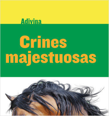 Cover: Crines majestuosas (Majestic Manes): Caballo (Horse)