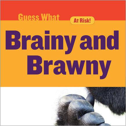 Cover: Brainy and Brawny: Gorilla