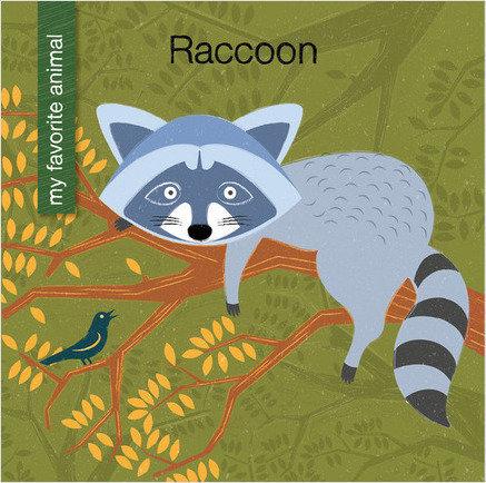 Cover: Raccoon