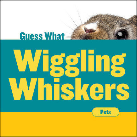 Cover: Wiggling Whiskers: Rabbit