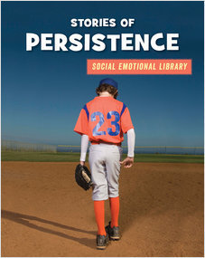 Cover: Stories of Persistence