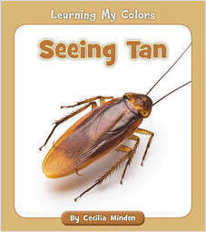 Cover: Seeing Tan