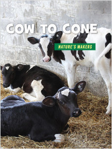 Cover: Cow to Cone
