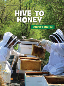 Cover: Hive to Honey