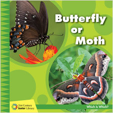 Cover: Butterfly or Moth