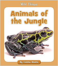 Cover: Animals of the Jungle