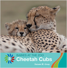 Cover: Cheetah Cubs