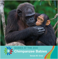 Cover: Chimpanzee Babies