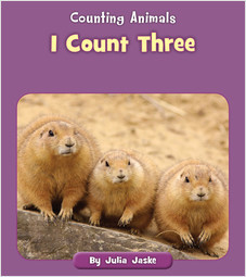 Cover: I Count Three
