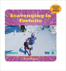 Cover: Scavenging in Fortnite
