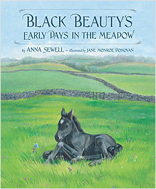 Cover: Black Beauty's Early Days in the Meadow