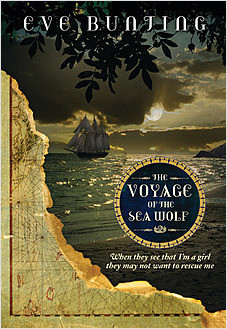 Cover: The Voyage of the Sea Wolf