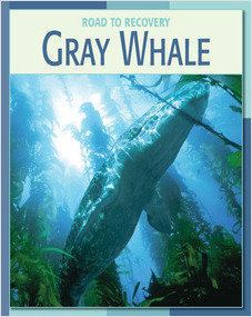 Cover: Gray Whale