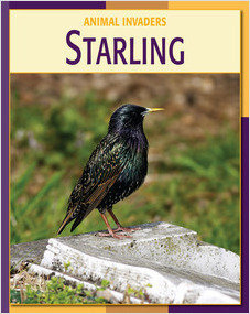 Cover: Starling