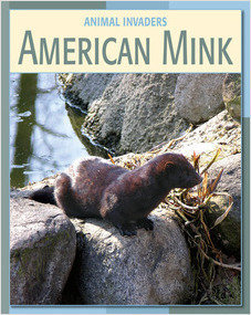 Cover: American Mink
