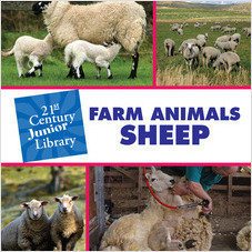 Cover: Farm Animals: Sheep