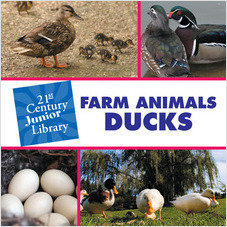 Cover: Farm Animals: Ducks