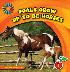 Cover: Foals Grow up to Be Horses