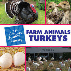 Cover: Farm Animals: Turkey