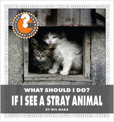 Cover: What Should I Do? If I See a Stray Animal