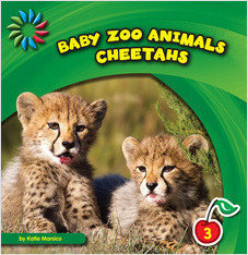 Cover: Baby Zoo Animals
