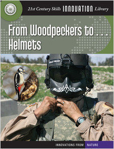 Cover: From Woodpeckers to... Helmets
