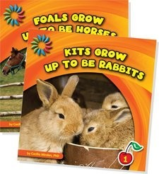 Cover: Animals Grow Up