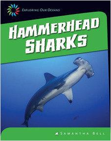 Cover: Hammerhead Sharks