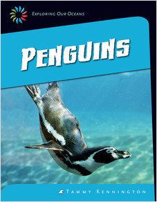 Cover: Penguins