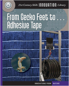 Cover: From Gecko Feet to Adhesive Tape