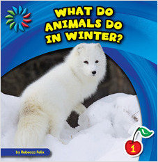 Cover: What Do Animals Do in Winter?