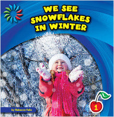 Cover: We See Snowflakes in Winter