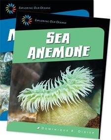 Cover: Strange Sea Creatures